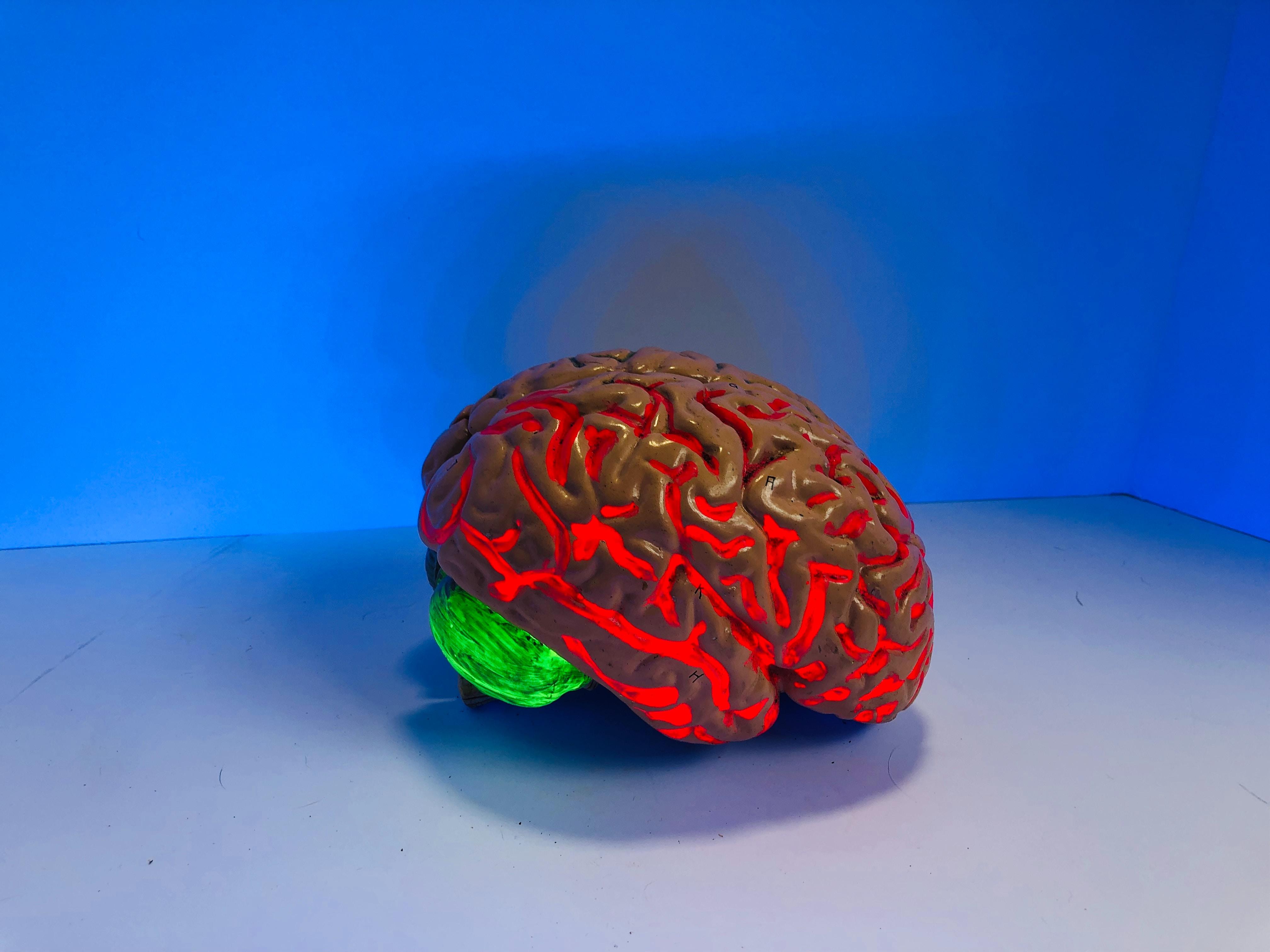 cérébral